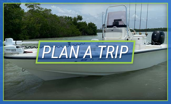 Plan A Trip With Salty John's Fishing Charters